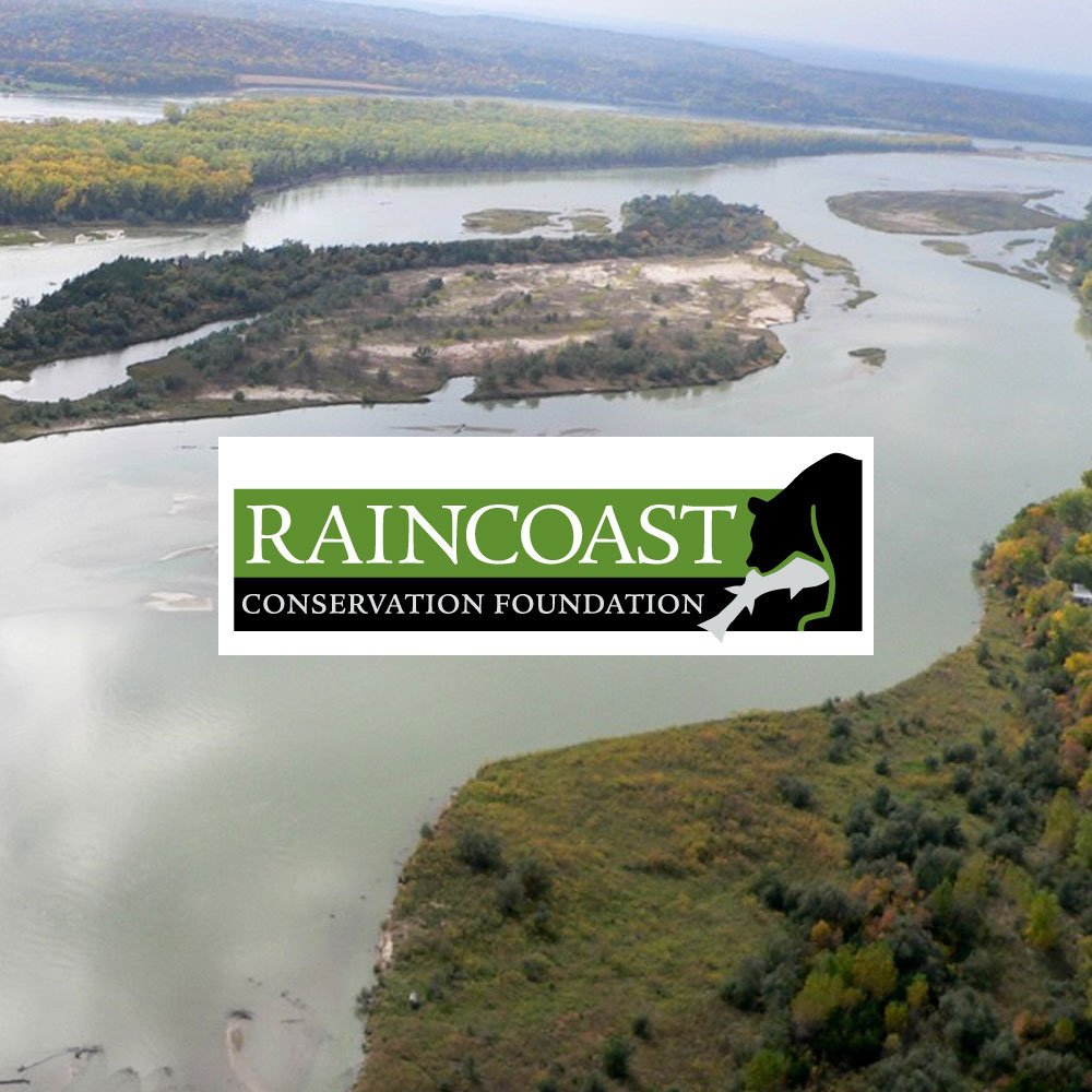 Typlan helps to restore estuary connectivity on the delta of the Fraser River estuary